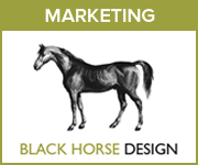 Black Horse Design Marketing (Powys Horse)
