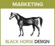 Black Horse Design Marketing (Powys Horse)