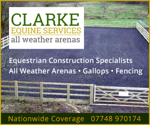 Clarke Equine Services 2020 (Powys Horse)