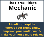 The Horse Rider's Mechanic 01 (Powys Horse)