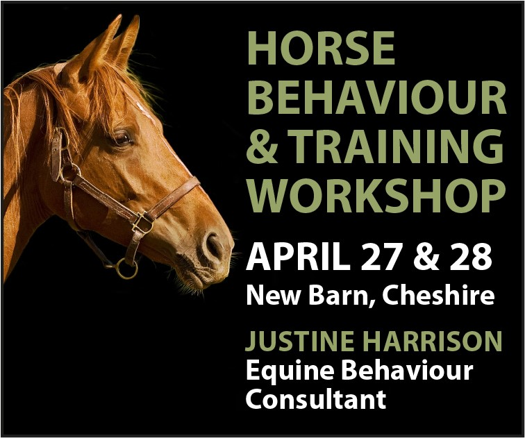 Justine Harrison Workshop April 2019 (Powys Horse)