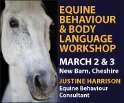 Justine Harrison Workshop March 2019 (Powys Horse)