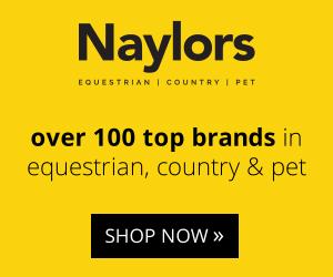Naylors 02 (Powys Horse)