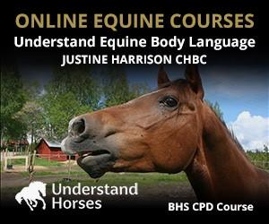 UH - Understand Equine Body Language (Powys Horse)